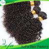 Trama Curly Kinky não processada do cabelo humano do Virgin do cabelo de 100% Remy