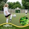 Erba artificiale della moquette sintetica dell'erba di gioco del calcio