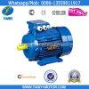 Motor elétrico trifásico do ferro de molde Y2 (Y2-632-2)