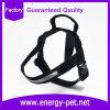 De Producten van het huisdier leveren de Gemakkelijke Uitrusting van de Hond van de Gang in Zwarte