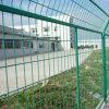 (PVC revestido) vinil verde cerca soldada revestida do engranzamento de fio