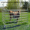 1800*2100mm 무겁 의무 Galvanized Rail Pastoral Industry Livestock Cattle Panel