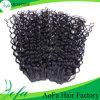 魅力的なブラジルの緩いカーリーヘアーのWeft人間の毛髪の拡張