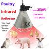 Infrarrojo Lámpara De Calor Despejado IR R125 R40 150W 175W 250W