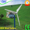 2000W Wind Generator met glasvezel-Reinforced Plastic Blades en Fine Cast Steel Generator