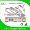 SuperBright LED Strip 5050 SMD 60LEDs/M 24V Strip Light, 300LEDs LED Light Flexible