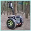 Spiaggia che si leva in piedi il motorino elettrico dell'equilibrio di auto delle rotelle del vagone per il trasporto dei lingotti 4000W due
