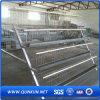 Huhn Cage Plans für Sale
