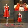 a - lijn /Priness Halter Short Mini Dress met het Draperen Beading (6506)