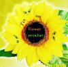 디지털 Flower Art Printer 또는 Digital 로즈 Speaking Flower Printer