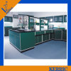 Reagent Shelf를 가진 실험실 Medical Furniture Sink Bench