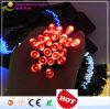 A luz feericamente/fornecedor solar de China/corda solar iluminam a venda por atacado de China