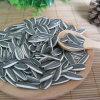 Новые семена подсолнуха урожая от Shandong Guanghua