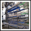 Tipi di Battery Cage System in Poultry per Broilers