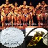 Pó farmacêutico da nutrição do Bodybuilding de Phenylpropionate do Nandrolone da matéria- prima