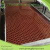 Mucho tipo madera contrachapada de papel del recubrimiento de 1220X2440X1.6-5.0m m de Linyi