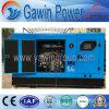 새로운 디자인 Weichai 디젤 엔진 발전기 세트 침묵하는 유형