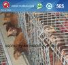 家禽装置の鶏のケージ