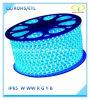 Blue 5050SMD LED Rope Light avec 1 an de garantie