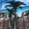 장식적인 인공적인 코코넛나무