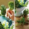 Het BloemenSchuim van Cuttable voor Bloemstuk & Decoratie voor Kerstmis