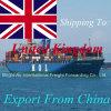 Frete de mar direto da expedição da carga da troca do frete de China a Inglaterra