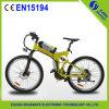 36V Brushless Motor Electric Mountain Bike