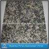 床タイルまたは平板のための磨かれた自然なブラウンのヒョウの皮の花こう岩