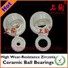 Cuscinetti di ceramica di alto Zirconia resistente alla corrosione