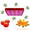 1000W LED Garden Light, LED Grow Light voor Greenhouse