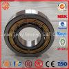 Le roulement à rouleaux cylindrique à faible bruit (N208E)