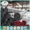 Tubo de acero BS1387 y ASTM y JIS de la galvanización