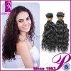 2013普及したヘアースタイルのカーリーヘアーのブラジルのバージンの毛