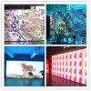 Schermo di visualizzazione pieno locativo dell'interno di colore LED di alta qualità video con 3 anni di garanzia