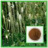 Saponine nere del triterpene dell'estratto 2.5-8% di Cohosh