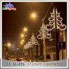 옥외 훈장 정원 폴란드 거리 LED 램프 크리스마스 불빛
