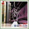 Айсберг лазера Кристл 3D с изображением (JD-CB-324)