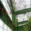 인공적인 산울타리 담 잎 플라스틱 합성 산울타리 회양목 매트