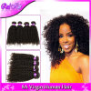 Malaysian Curly Hair Afro Kinky Curly Hair 3 Bundles Lot 7A Unprocessed Malaysian Kinky Curly Virgin Hair Human Hair Extensions