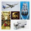 Consolidar o serviço da logística da um-Classe de China ao transporte de Brasil