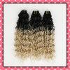 Горячие волосы 2 тонов бразильские сотка курчавые волос 18inches