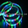 Indicatore luminoso della lista dell'indicatore luminoso di striscia di colore LED di RGB SMD3528 LED