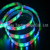 RGB 색깔 LED 지구 빛 SMD3528 LED 명부 빛