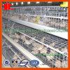 Equipamento novo das aves domésticas da bateria para a camada da exploração agrícola de galinha