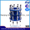 (PN40) Dismantling de alta presión Joint en China Original