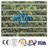 Rete metallica decorativa di alta classe del metallo Mesh/Decorative Net/Decorative