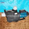 プール水サイクルポンプ