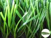 Herbe artificielle/synthétique avec le TTT