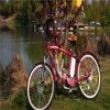 O pedal ajudou à bicicleta elétrica Rseb-1214