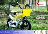 12 Zoll-schönes heißes Verkaufs-Kind-Fahrrad für Mädchen